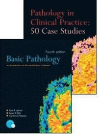 basic pathology an introduction to the mechanisms of disease pdf
