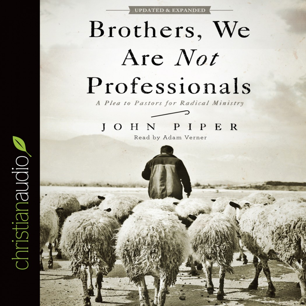 brothers we are not professionals pdf