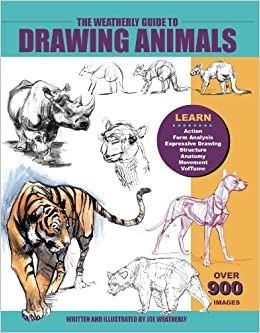 anatomy and drawing book pdf
