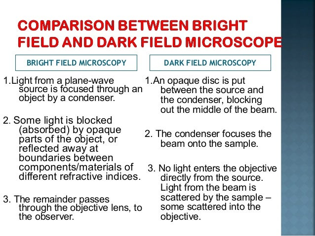 difference between brightfield and darkfield microscopy pdf
